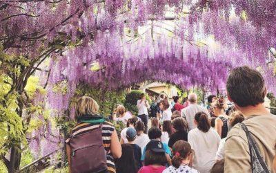 CACCIA AL TESORO BOTANICO – Grandi Giardini Italiani